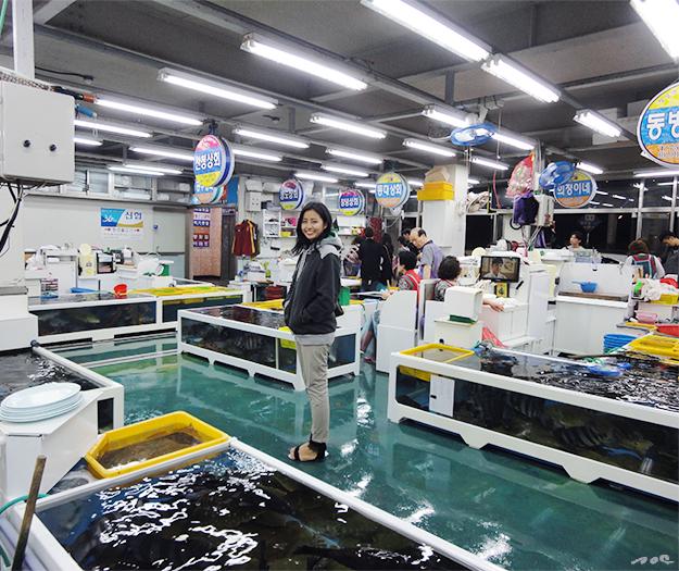 busan, fish market, korea, south korea