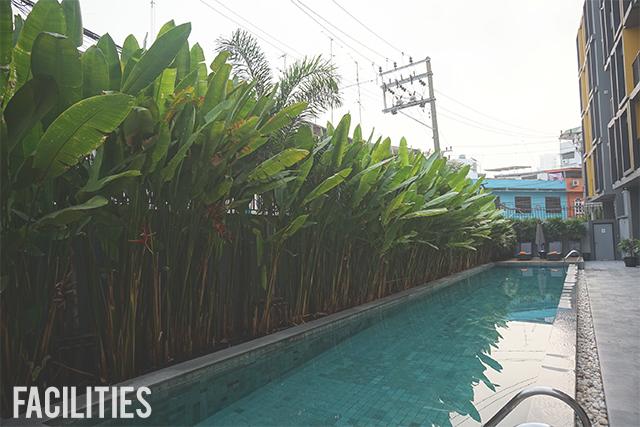 Bangkok Expat
